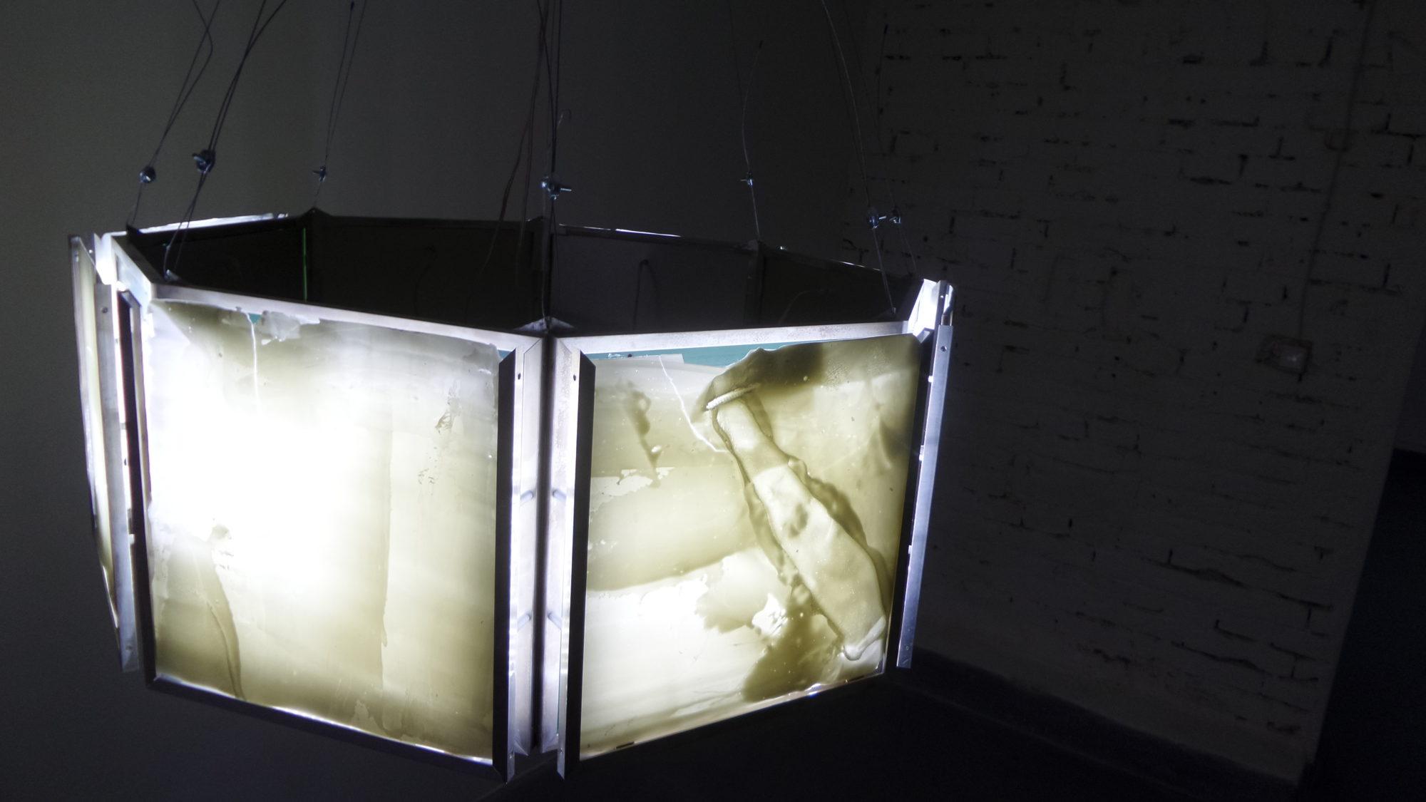 Sub Terrein – exhibition