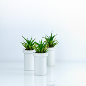 Pocket vase – set tří